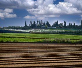 אגודה שיתופית - רשות מקרקעי ישראל